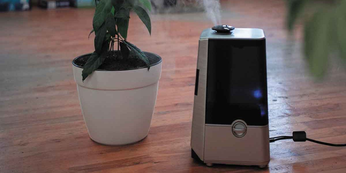 Your Dream For The Best Deal In AIR PURIFIER Is Covered Here!